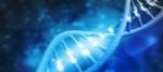 DNAおよびRNAのエタノール沈殿【原理とプロトコル】