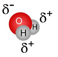 溶解性の制御がエタノール沈殿の原理