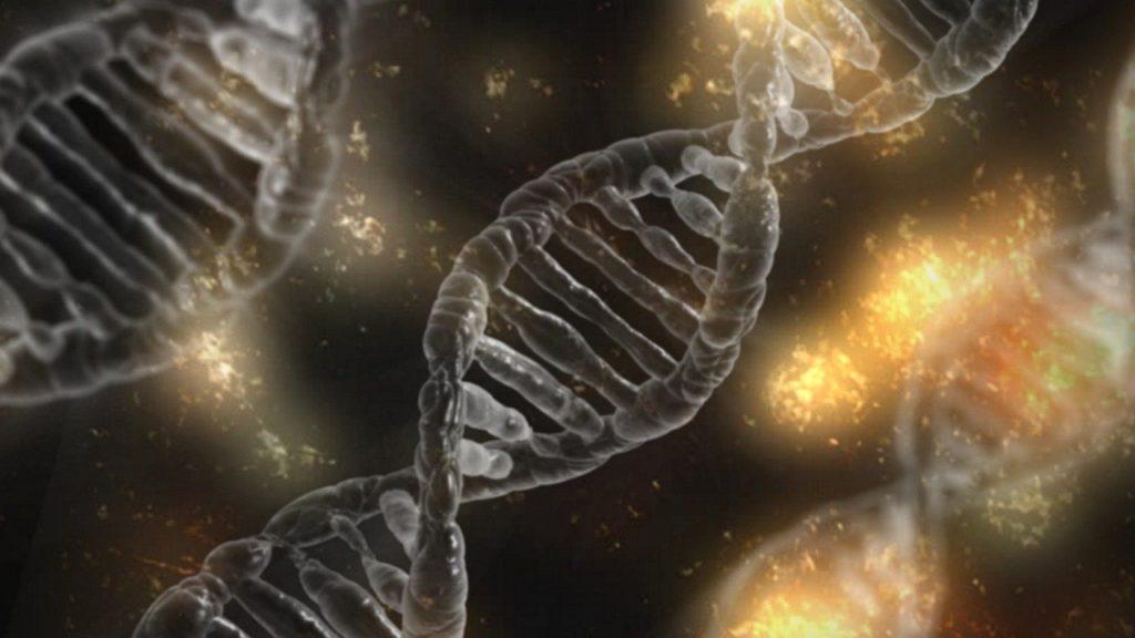 Immuno-PCRに切り替える理由