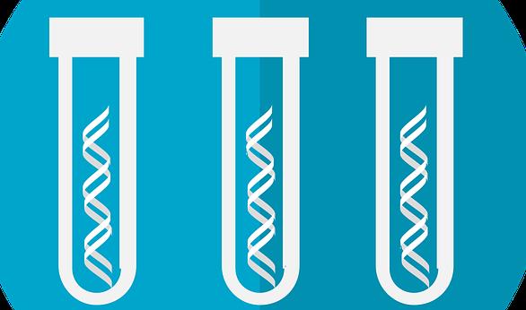 大腸菌(E. coli)からのゲノムDNA抽出プロトコル