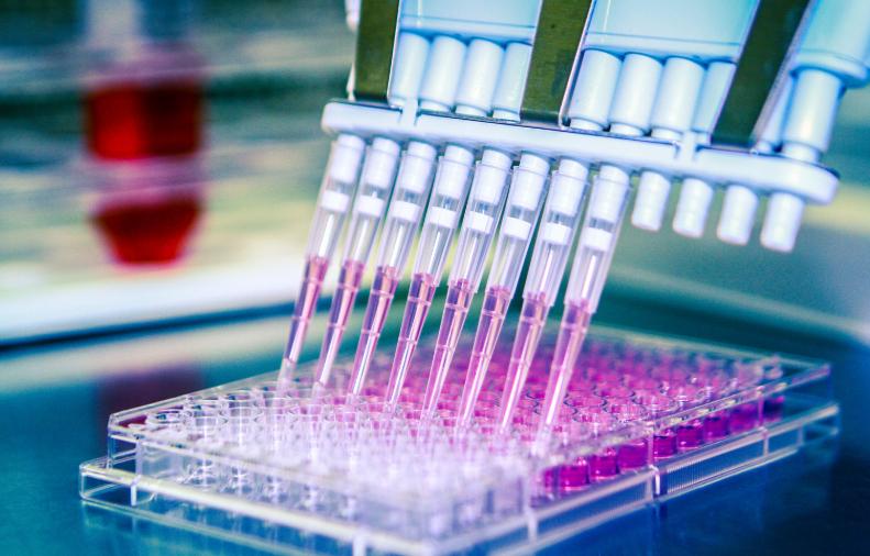 ナカライテスクと幹細胞&デバイス研究所(SCAD)が戦略的業務提携