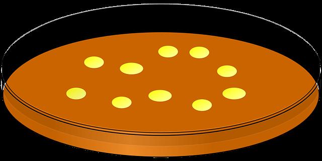 5. 動物や細胞の都合で動いている