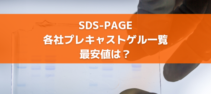 SDS-PAGE|各社プレキャストゲル一覧|最安値は?