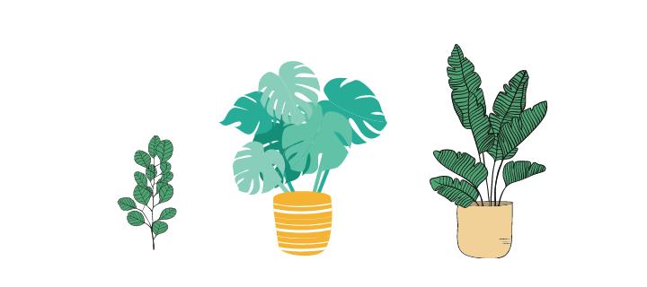 市販の植物DNA抽出キット