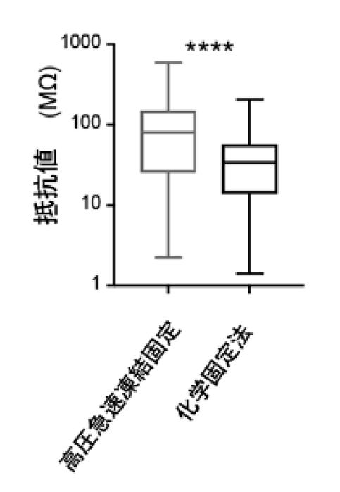 Fig.2 実測値に基づくスパインの 電気抵抗の算出